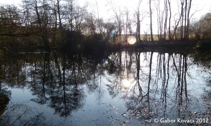 pond in winter © Gabor Kovacs 2012