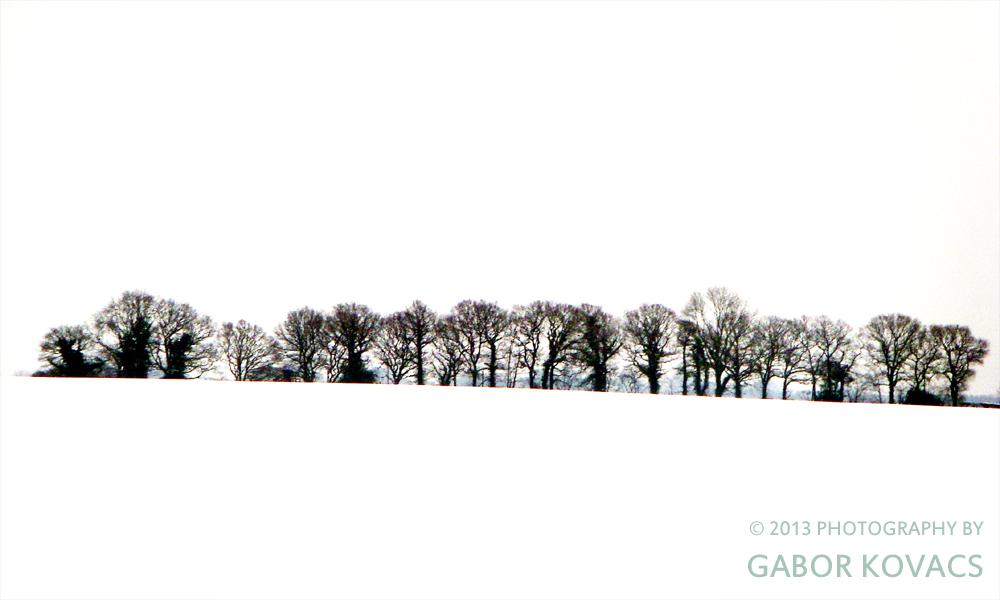 across a snowy field © 2013 PHOTOGRAPHY BY GABOR KOVACS